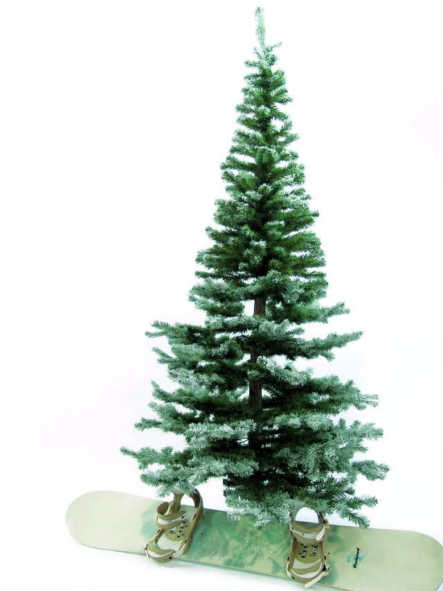 Fir tree, snow-flocked, 240cm