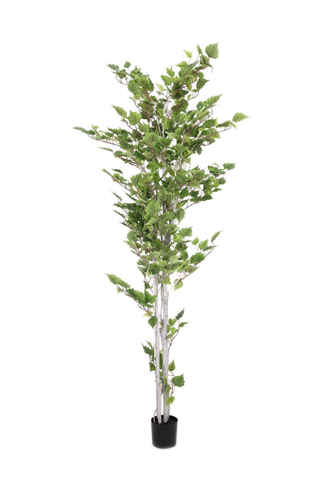 Billede af Kunstig Birch tree, 180cm