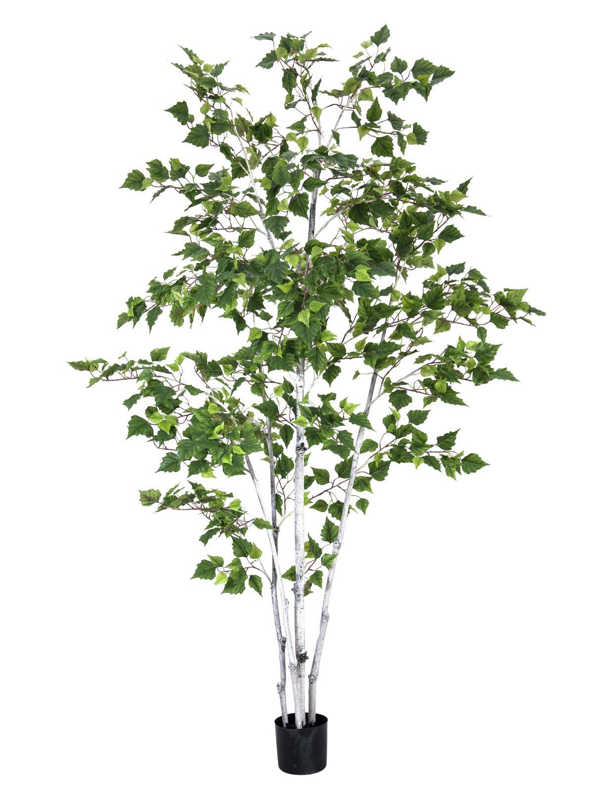 Billede af Kunstig Birketræ 210cm