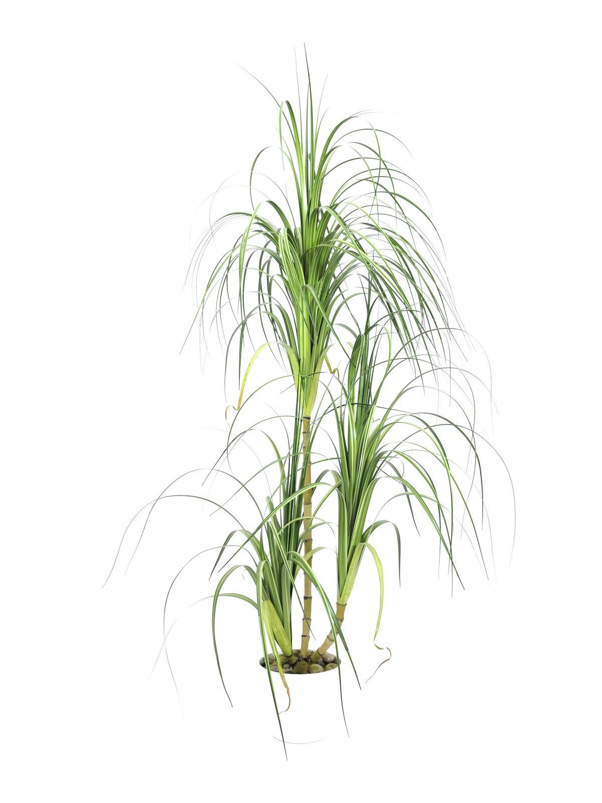 Image of   Kunstig Dracena busk, 160 cm