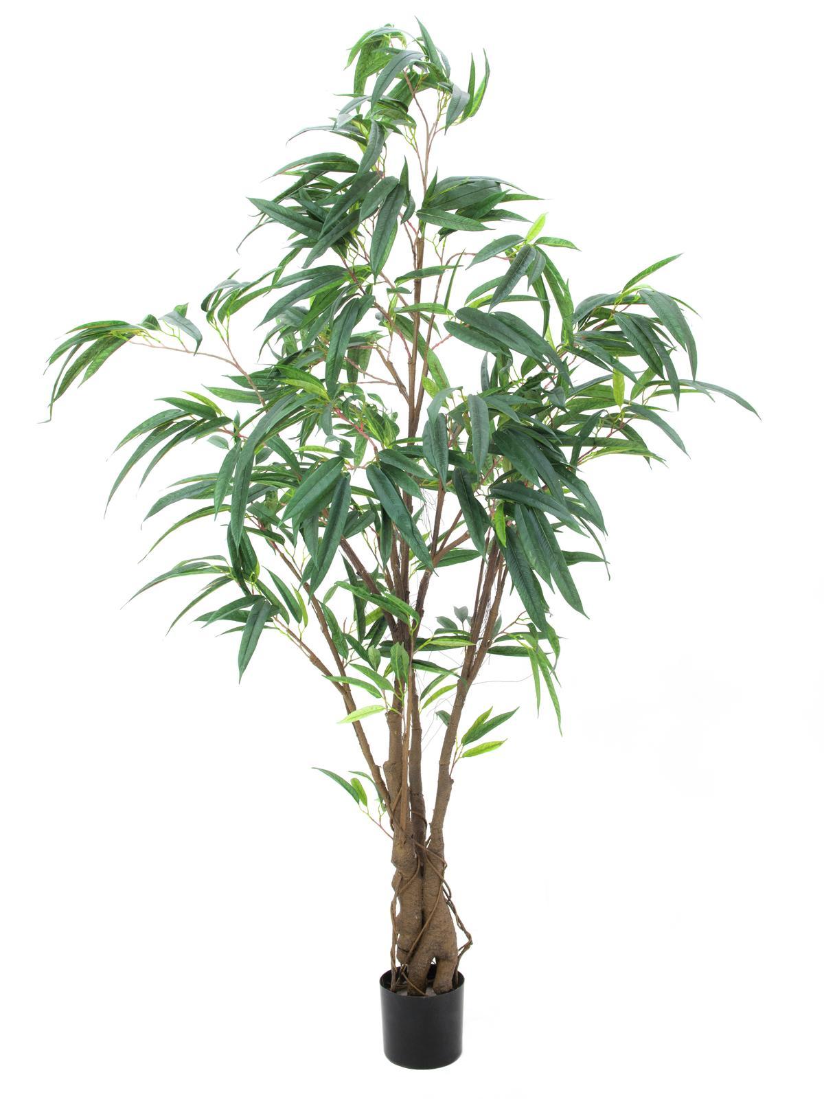 Billede af Kunstig Figen Longifolia, Tyk Stamme, 180cm