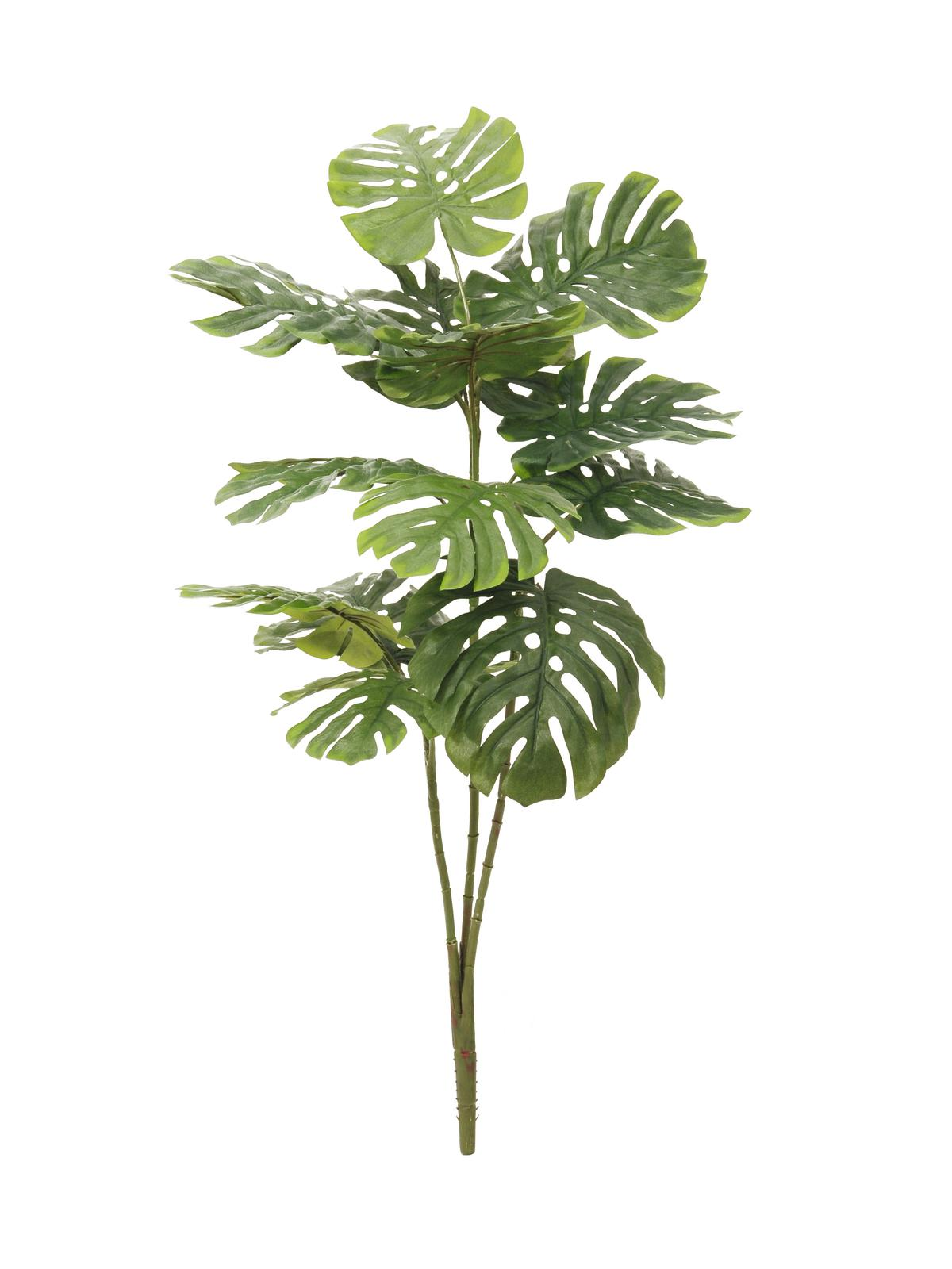 Split philo 150cm for Plante 90 cm