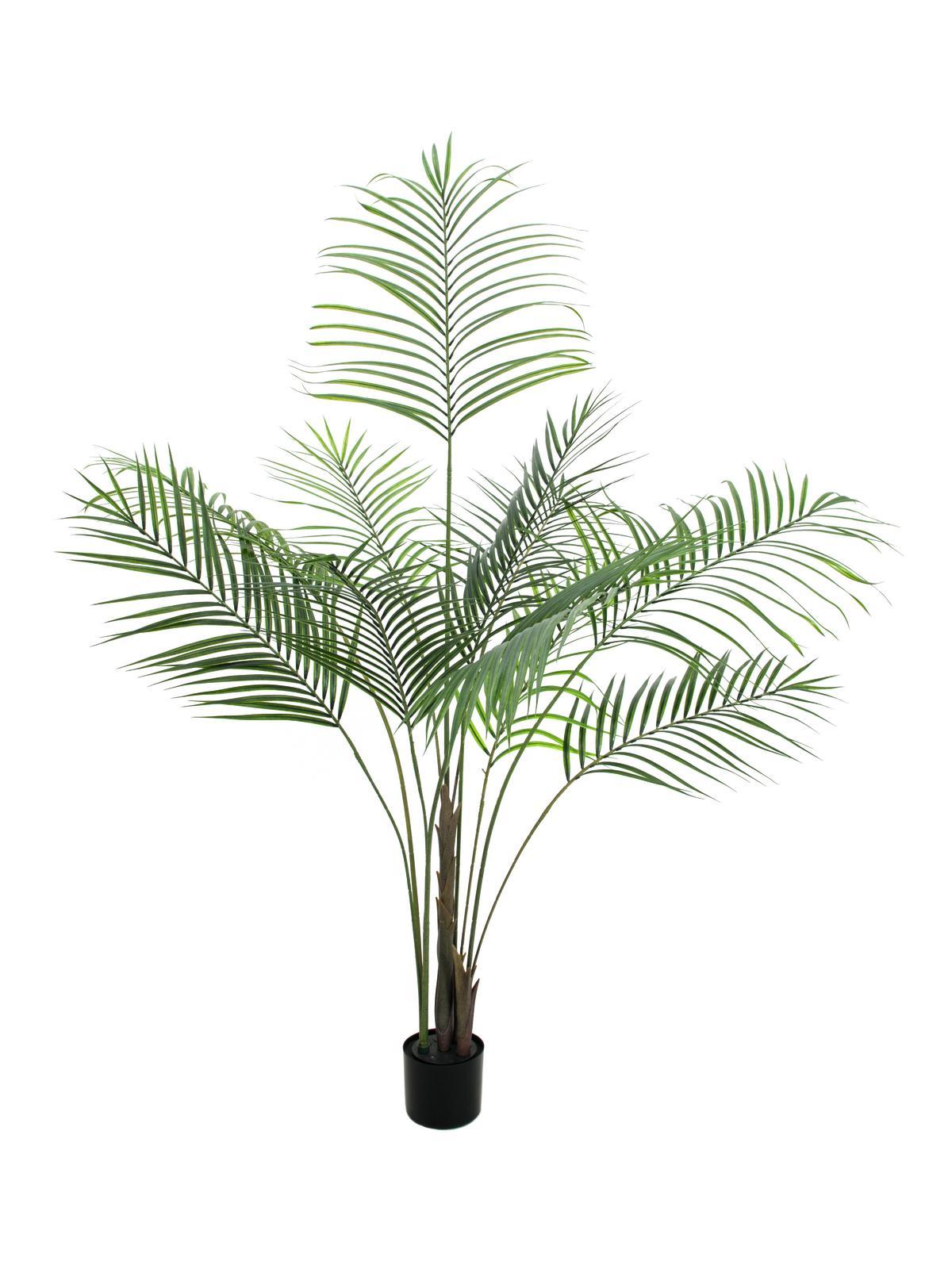 Image of   Kunstig Areca palme med store blade, 185 cm