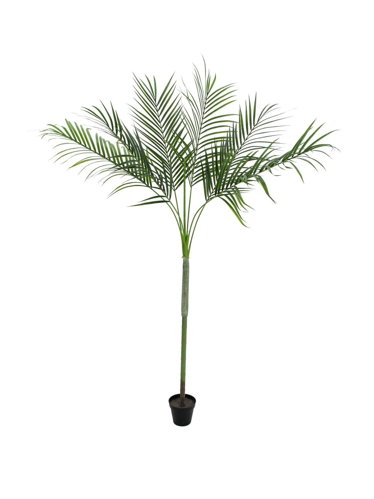 Image of   Kunstig Areca-palme med store blade , 180cm