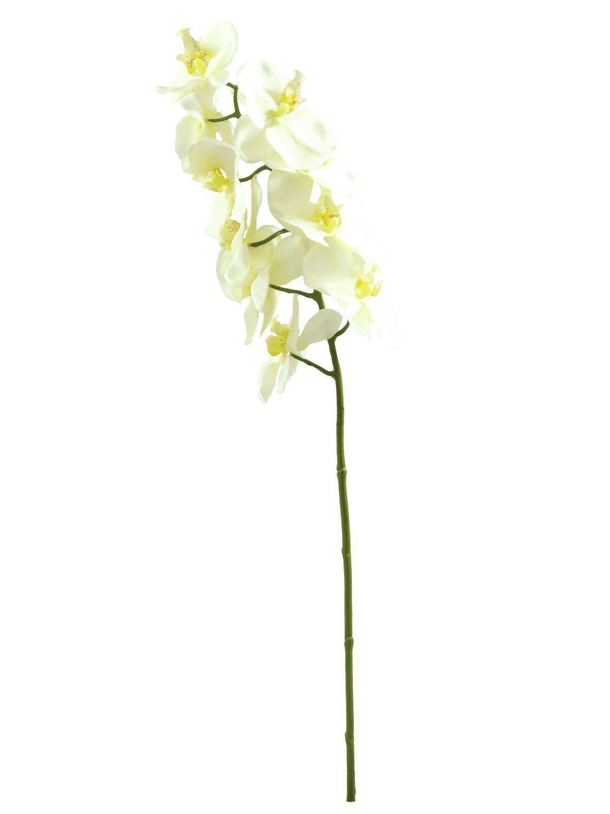 Billede af Kunstig Orchidspray, creme, 70cm