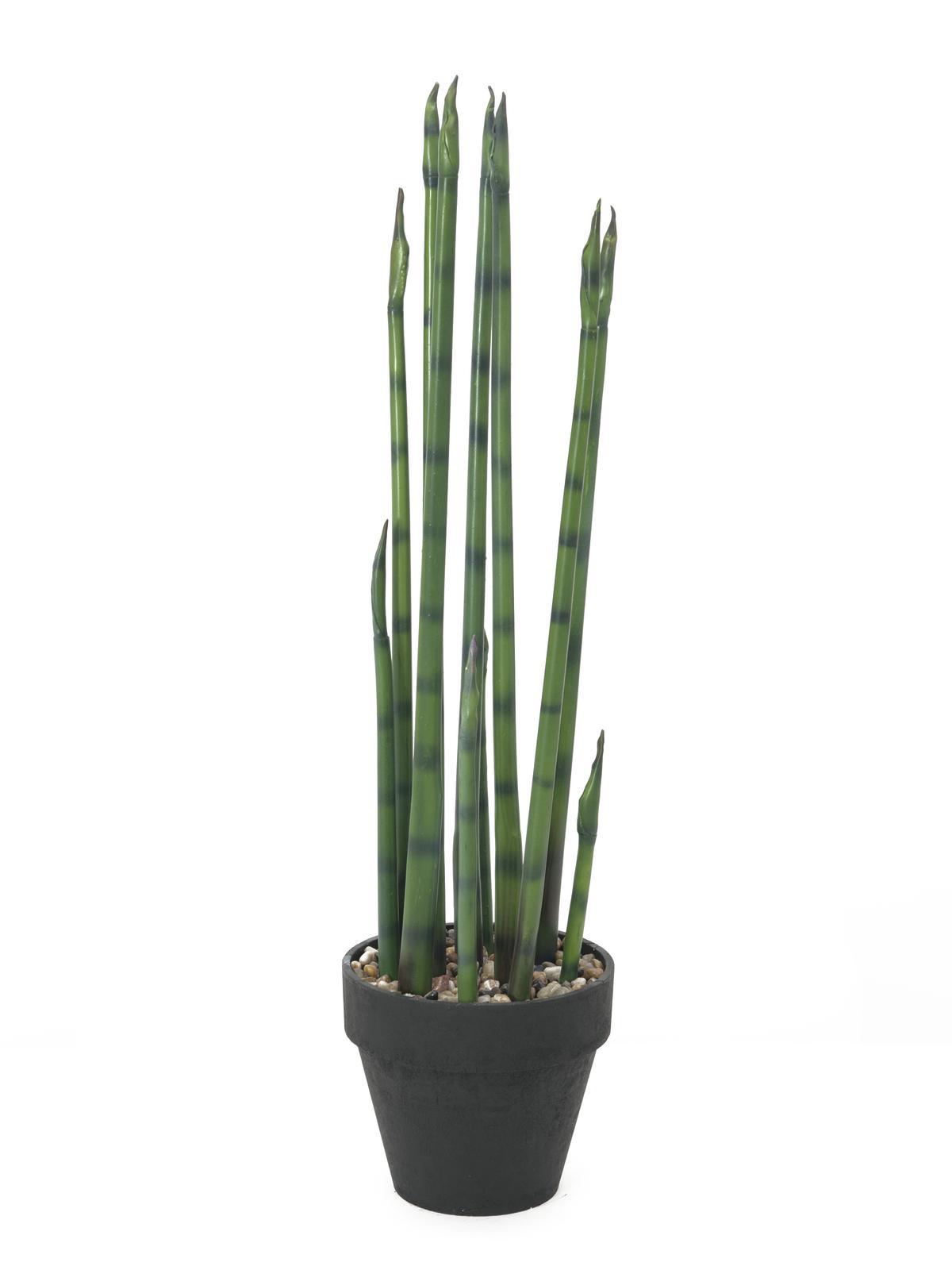 Billede af Kunstig Aloe Gigante, Grøn, 80cm