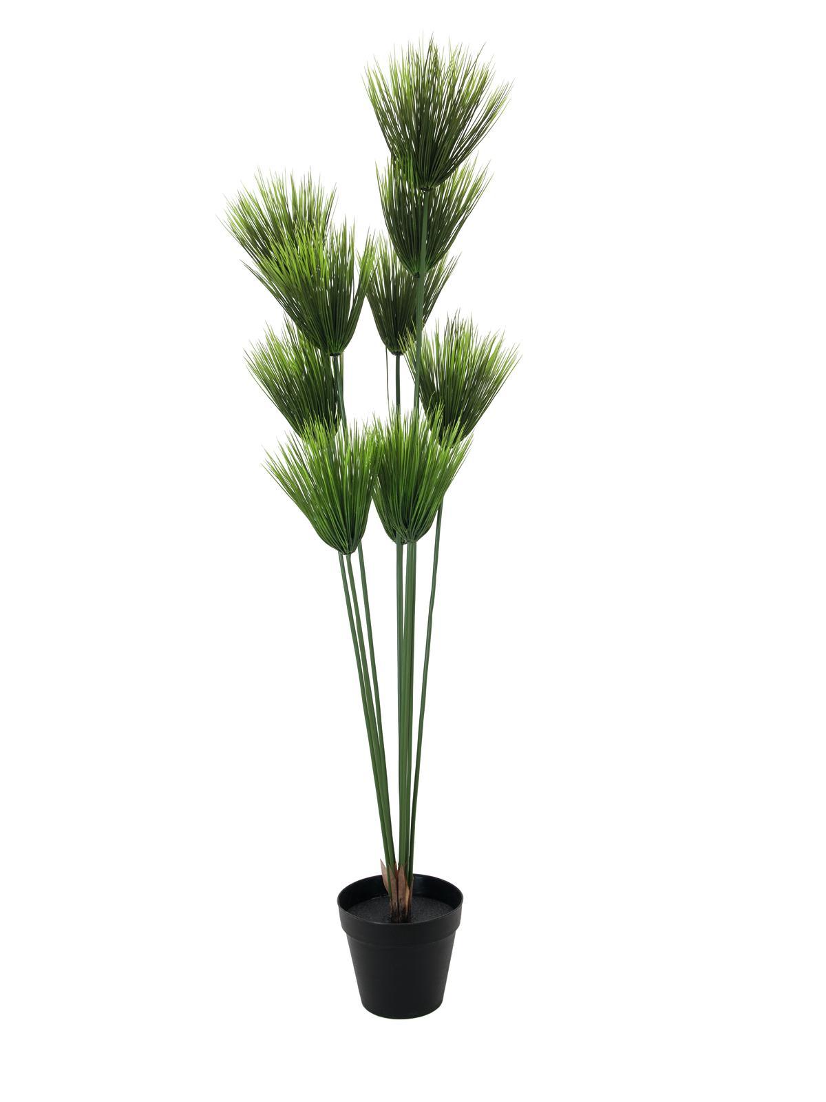 Billede af Kunstig Payrus plante, 150cm