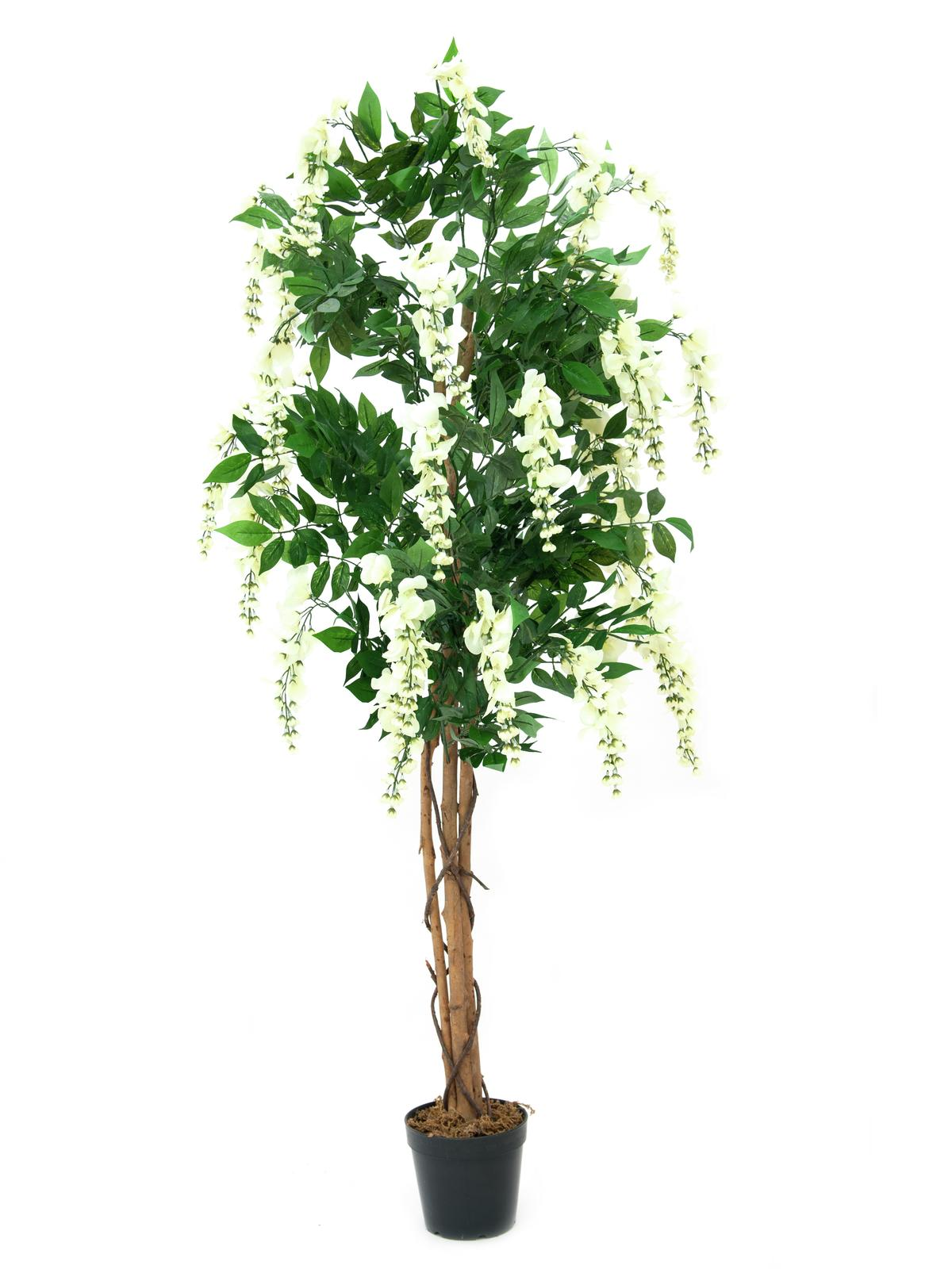 Billede af Kunstig Hvid blåregn træ, 150 cm