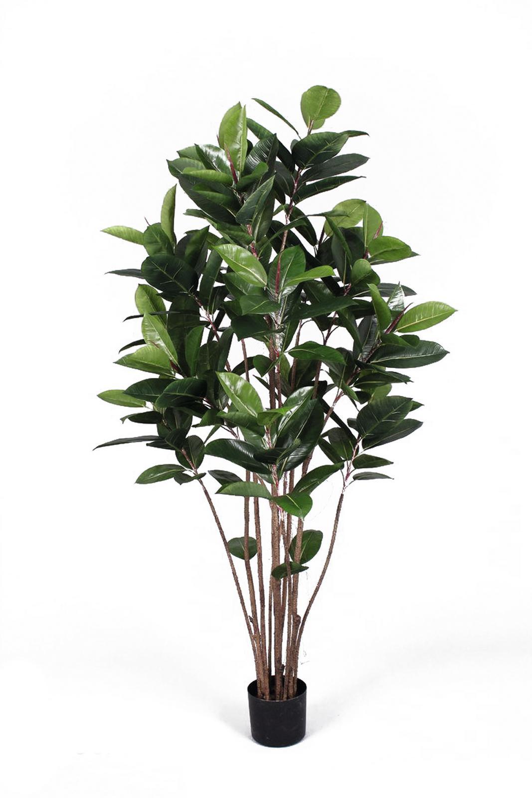 Billede af Kunstig Gummitræ 150 cm