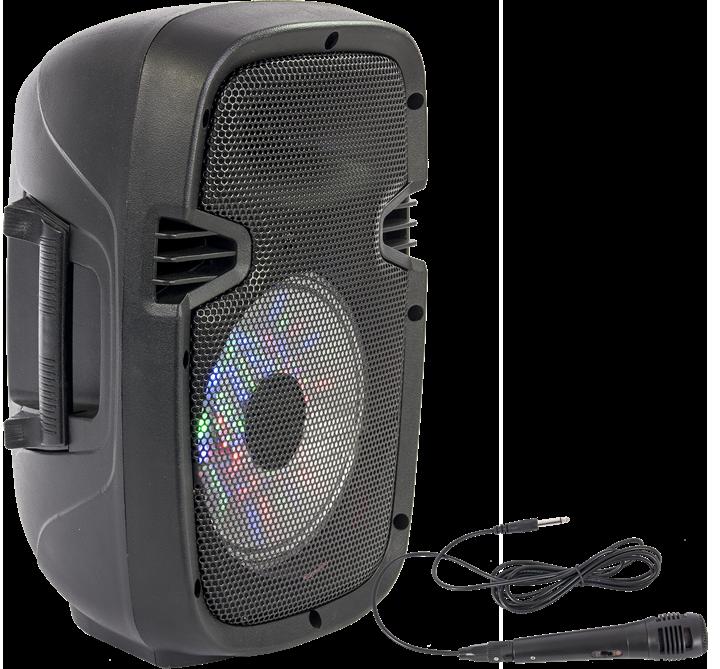 Billede af PORTABLE SOUND SYSTEM 8''/20cm - 300W WITH USB, BLUETOOTH, FM & MIC