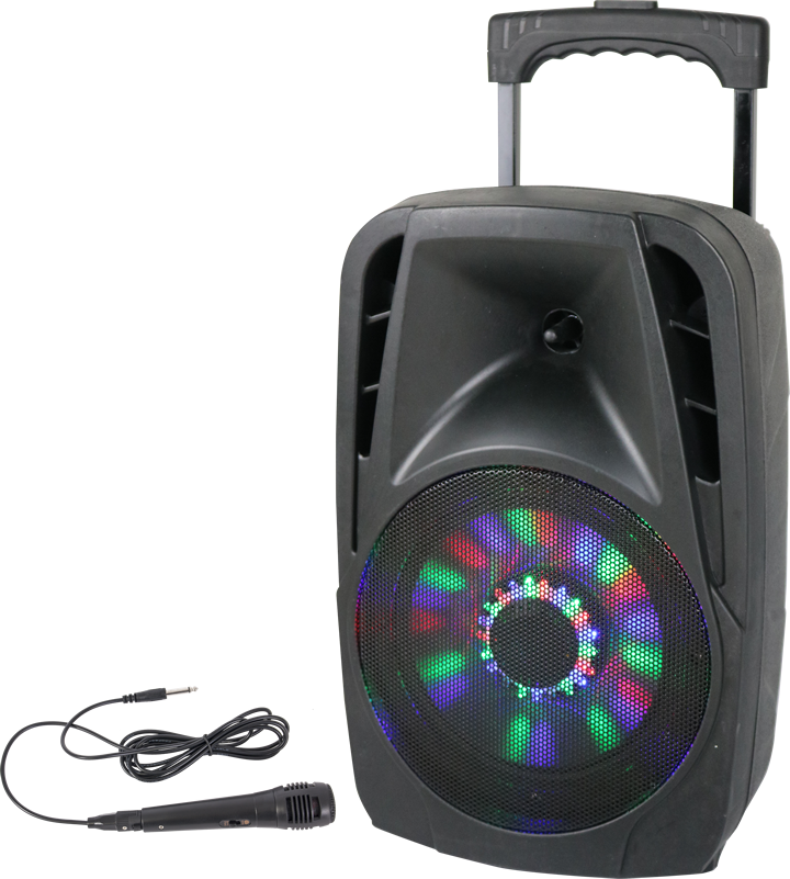 Image of   PORTABLE SOUND SYSTEM 8''/20cm - 300W WITH USB, BLUETOOTH, FM & MIC