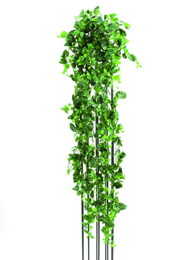 Billede af Kunstig Classical potho tendril, 160cm