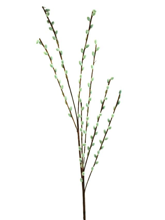 Billede af Kunstig Pussy willow spray, 117cm