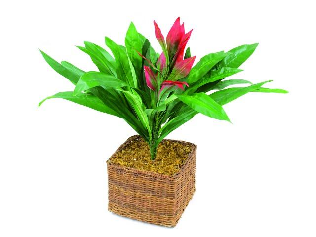 Billede af Kunstig Guzmania with red flower, 48cm