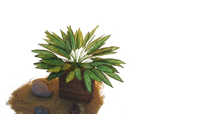 Billede af Kunstig Silver King Plant, 45cm