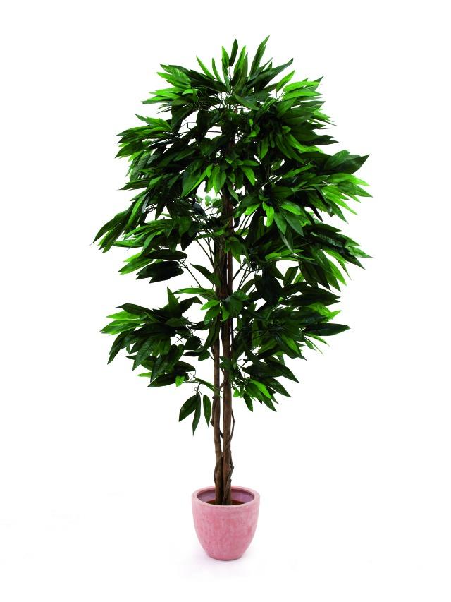 Billede af Kunstig Jungle tree Mango, 180cm