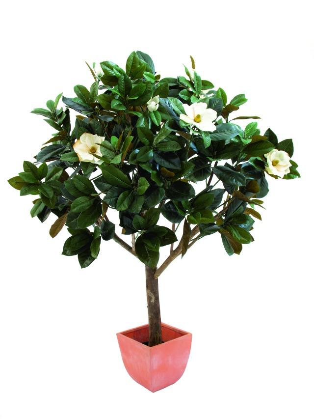 Billede af Kunstig Magnolia Tree, 150cm