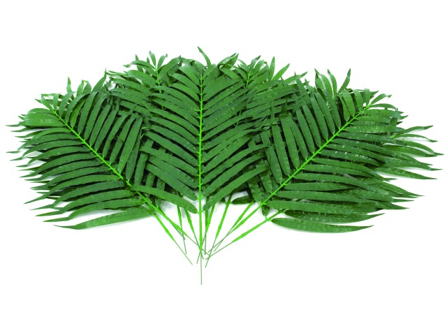 Billede af Kunstig Coconut palm branch, 12pcs., 80cm
