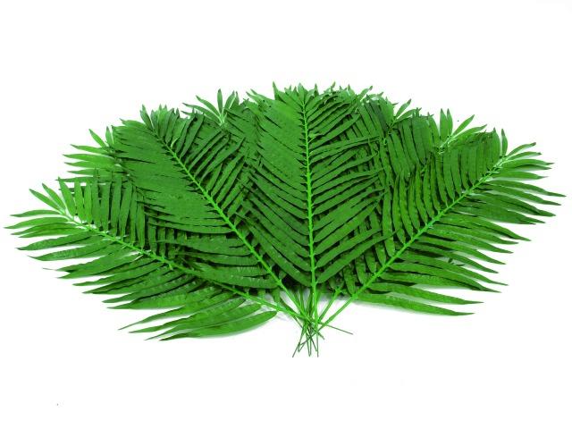 Billede af Kunstig Coconut palm branch, 12pcs., 110cm