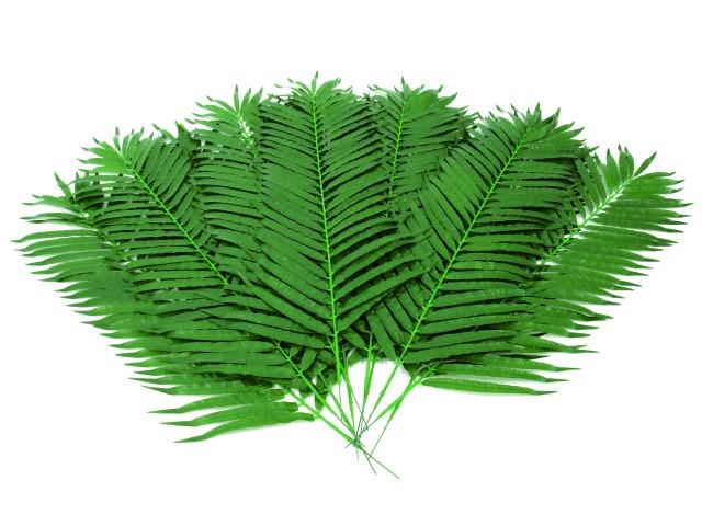 Billede af Kunstig Coconut palm branch, 12pcs., 130cm