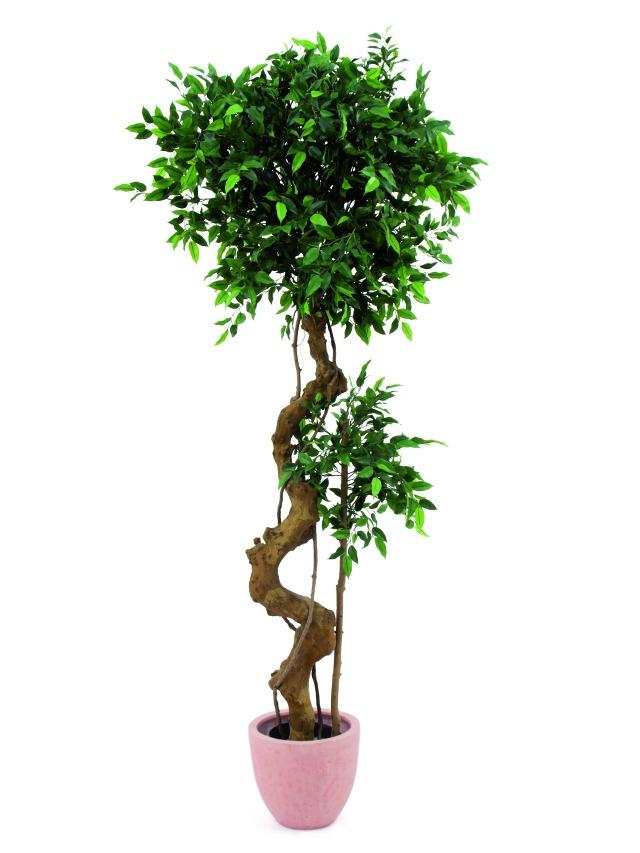 Billede af Kunstig Ficus bonsai trunk, 170cm