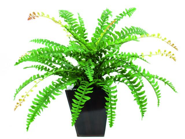 Billede af Kunstig Boston fern with flower, green, 85cm