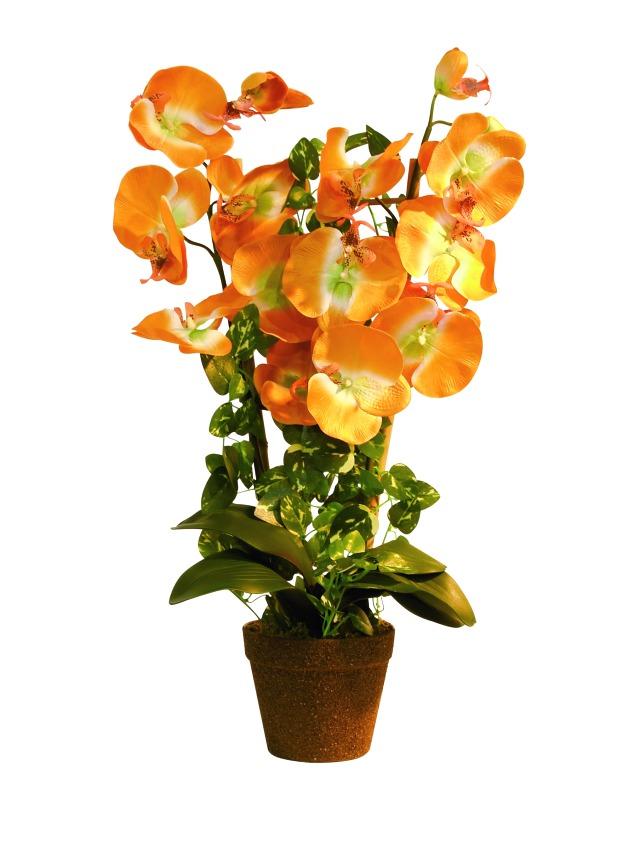 Billede af Kunstig Orchid, orange, 57cm