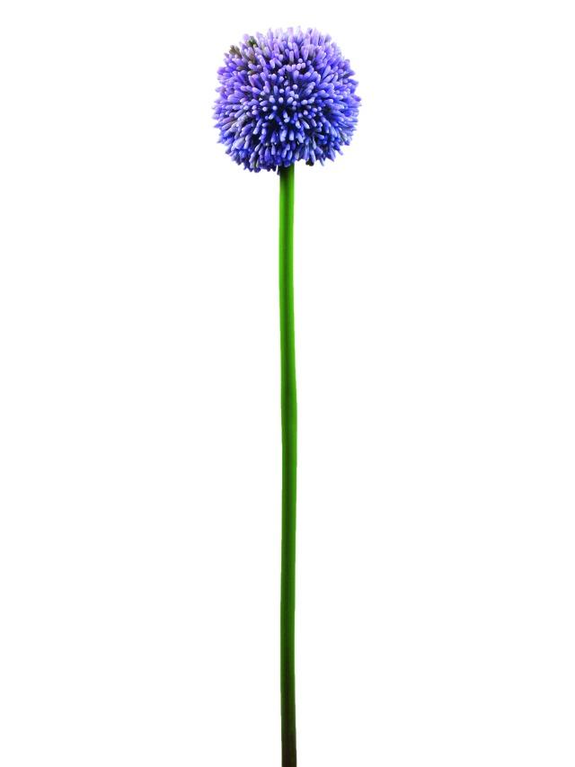 Billede af Kunstig Alliumspray, lavendel, 55cm