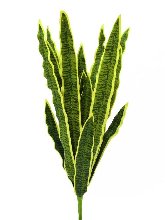Billede af Kunstig Sansevieria (EVA), green, 74cm