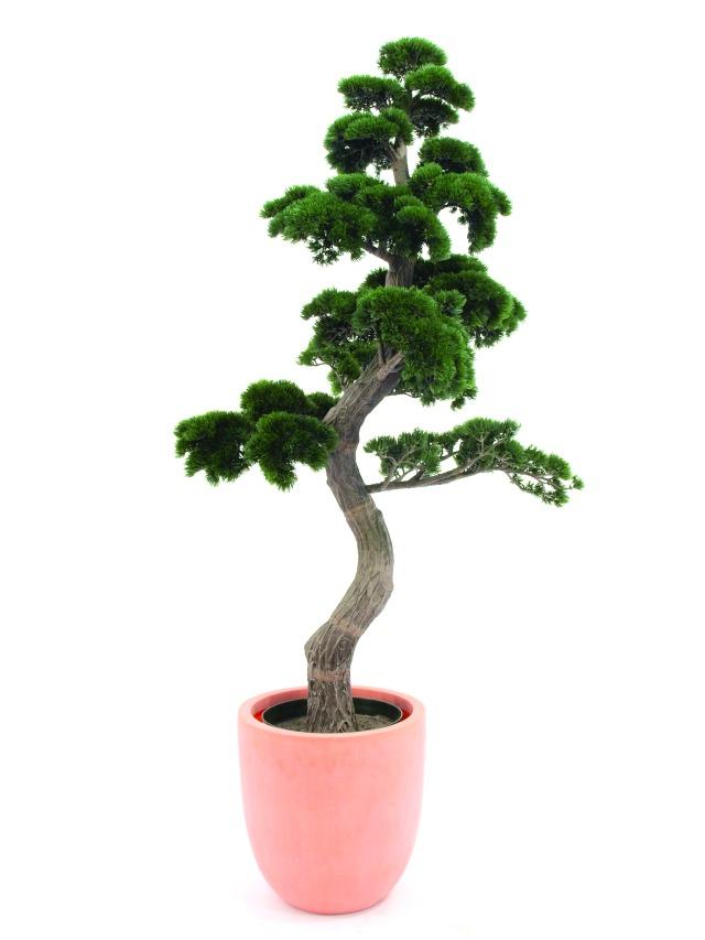 Billede af Kunstig Pine Bonsai, 180cm