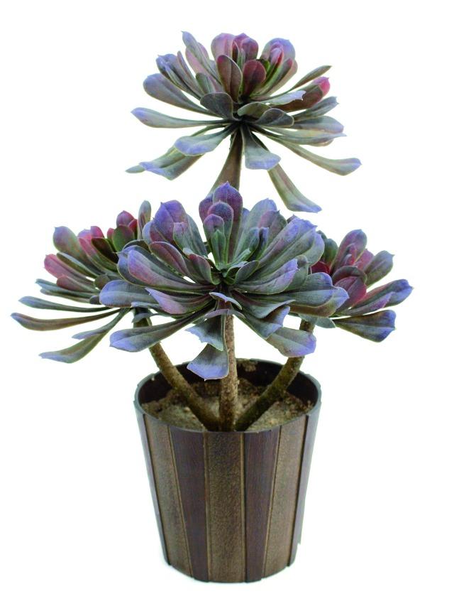 Billede af Kunstig Aeonium sukkulent, olivengrøn, 30 cm