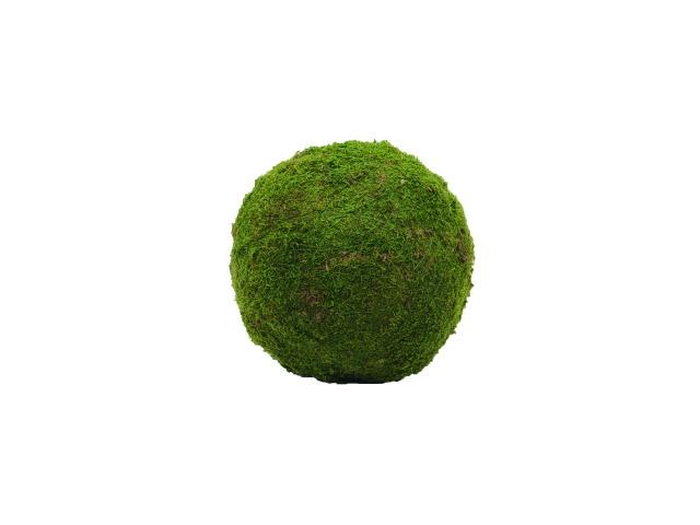 Billede af Kunstig Mossball, green, 30cm