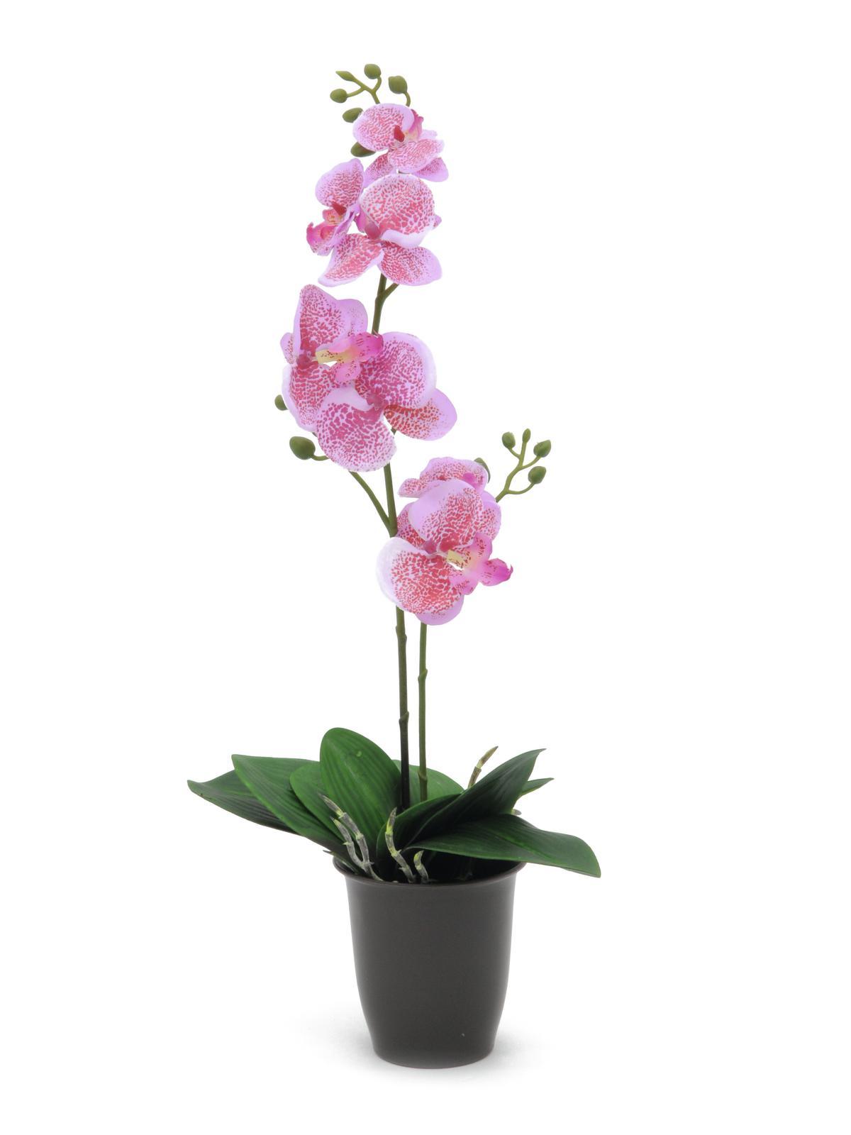 Billede af Kunstig Orchid, pink, 57cm