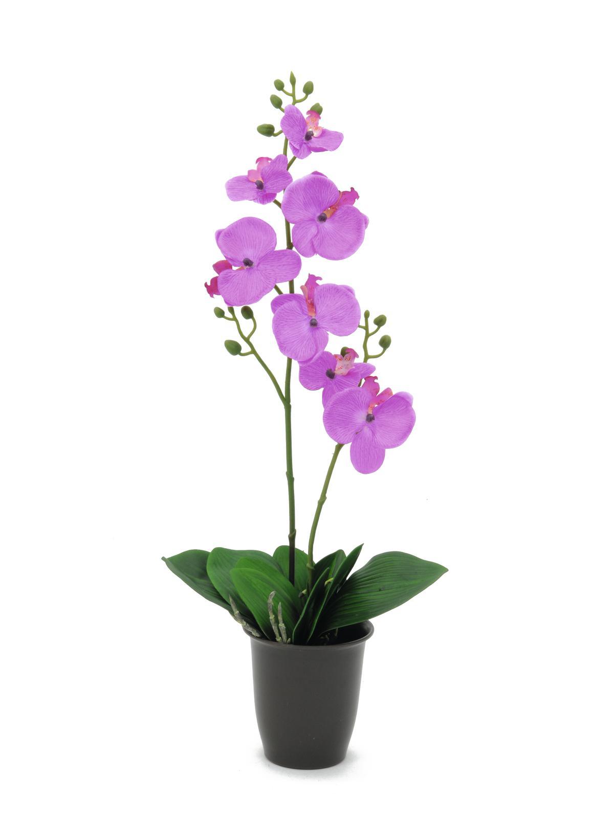 Billede af Kunstig Orchid, purple, 57cm