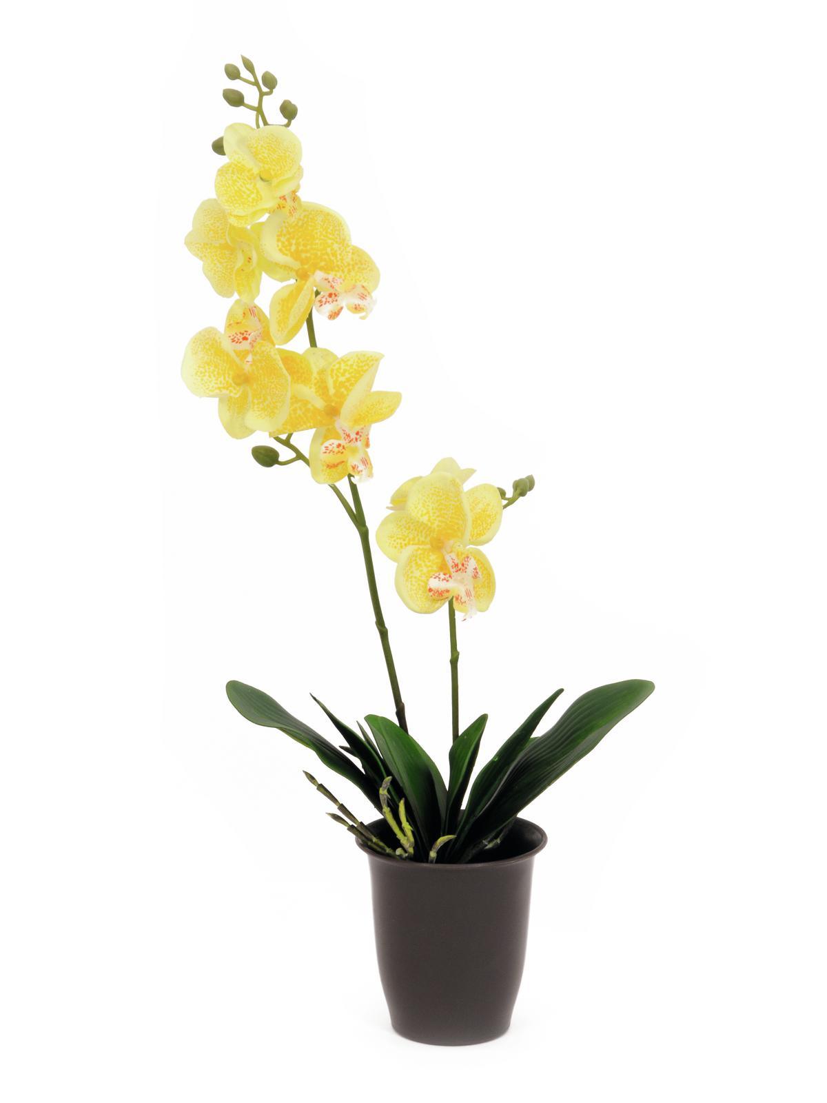 Billede af Kunstig Orchid, yellow, 57cm