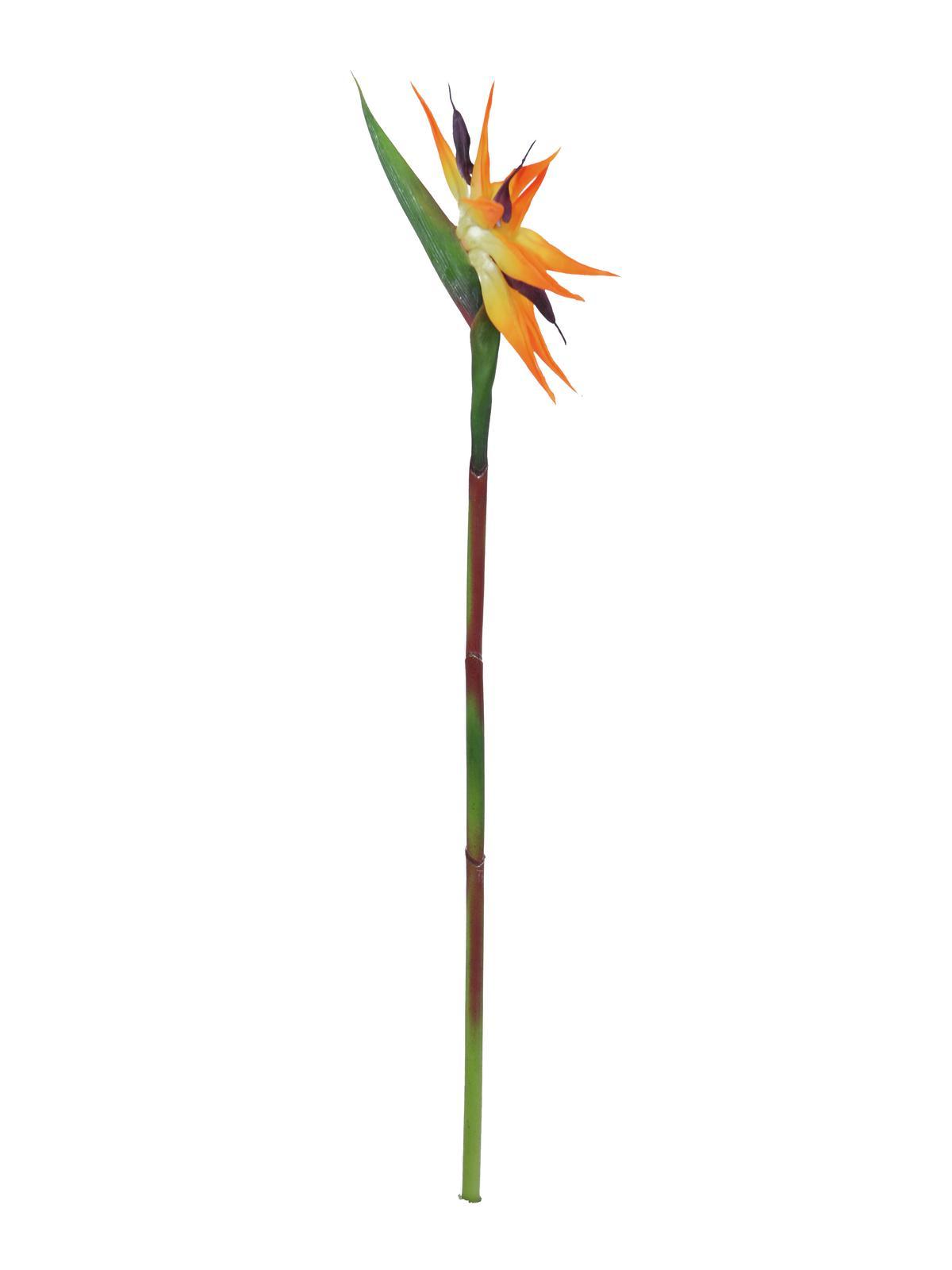 Billede af Kunstig Paradise bird spray, orange, 95cm